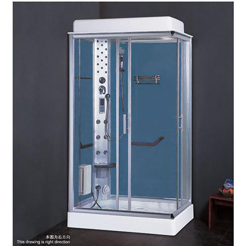 2019 new steam room with coated glass ZD-8012